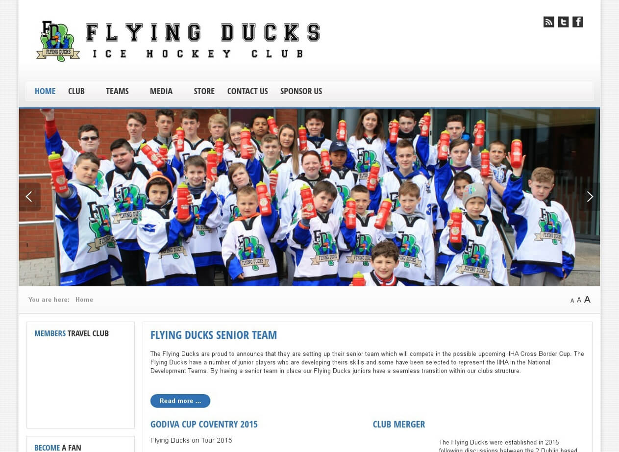Flying Ducks Ice Hockey Club